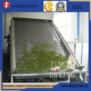 Stainless Steel Dehydrated Vegetable Belt Dryer pictures & photos