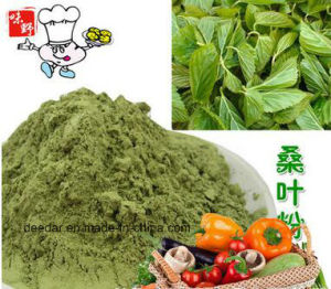 Plant Powder--Mulberry Powder pictures & photos