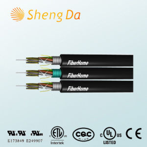 Long Distance and LAN Network Communication Fiber Optic Cable pictures & photos