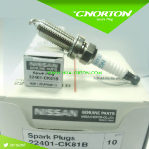 Ngk Spark Plugs for Nissan OEM 22401-Ck81b Plzkar6a-11 pictures & photos