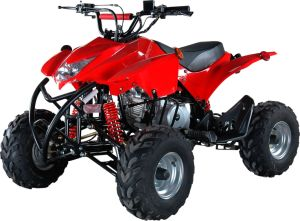 110cc Sport Quad ATV Bike for Sale pictures & photos