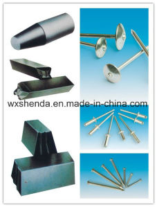 23 Years All Size Nail Making Mold pictures & photos