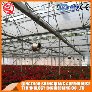 Agriculture Multi Span Plastic Green House for Planting pictures & photos