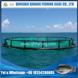 Diameter 16m Fish Cage Floating for Deep Sea Fish Farming Use pictures & photos
