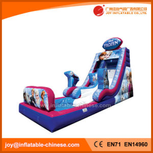 Cheap Frozen Inflatable Water Slide with Pool for Sale (T11-110) pictures & photos