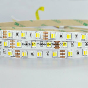 New Design LED Strip 5050LED Double Color in 1 LED pictures & photos