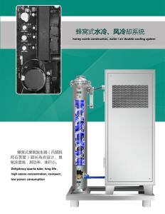 200g Industrial Ozone Generator for Food Grain Storage Disinfection pictures & photos