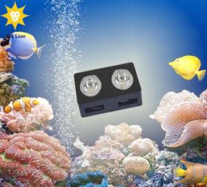 Manual and WiFi Control Aquarium LED Lighting 160W for Aquarium Tank Fish