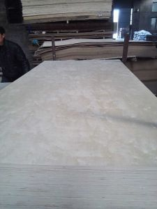 Birch Plywood C2. B2 Grade for Mexico Market pictures & photos