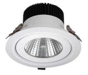 60W High Power CE, RoHS LED Down Light