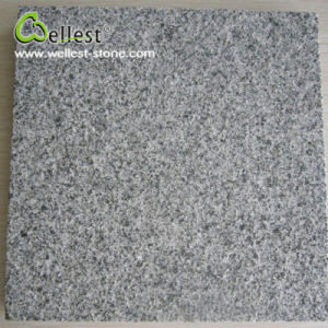 Popular Natural Stone Best Price G654 Black Flamed Granite pictures & photos