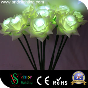 Wedding Decoration LED Rose Light pictures & photos
