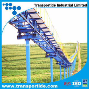Widely Used Transportide Pvg Belt pictures & photos