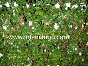 Artificial Leaves with Flowers Willow Fence (MW16018) pictures & photos