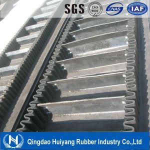 Heavy Duty Elevator Conveyor Belt