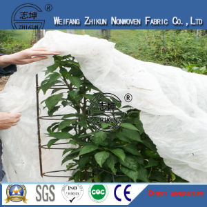 Anti-Aging 100% PP Non Woven Fabric for Agriculture