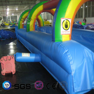 Rainbow Design Inflatable Big Slide for Outdoor Water Park LG8092 pictures & photos