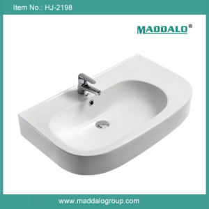 New Arrival Washroom Cabinet Basin (HJ-2198)