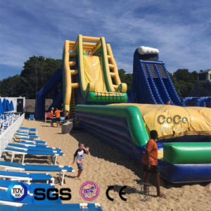 Cocowater Design Inflatable Big Slide for Outside Amusement Park LG9091 pictures & photos