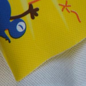 Printing PE Film Laminated Nonwoven Fabric pictures & photos