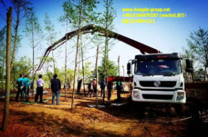 Hongda Nice Quality Concrete Pump with Boom -32m pictures & photos