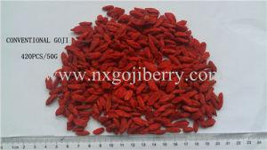 Goji Berry Export pictures & photos