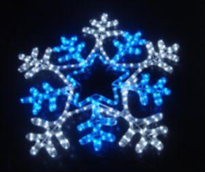 Christmas Light / Christmas LED Motif Light pictures & photos