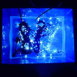 Waterproof Christmas Lights String pictures & photos