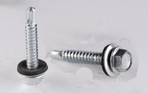 Fastener/ Self Drilling Screw/Roofing Screw pictures & photos