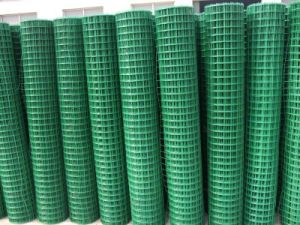 The Hot Sale PVC Coated Welded Wire Mesh pictures & photos