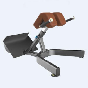 2015 Newest Gym Equipment Back Extension (SD1028) pictures & photos