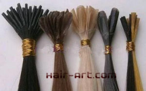 Stock 100% Remy Hair Extension - Nail Tip, Flat Tip & Shoelace