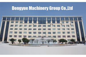 Germany AAC Block Making Machine] Dongyue Machinery Group pictures & photos