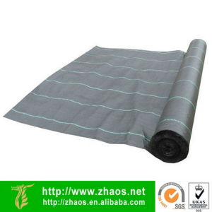 Moisture Barrier Fabric Plastic Barrier PP Weed Barrier pictures & photos