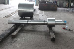 Gear Shafts Made in China with Forged Tec pictures & photos
