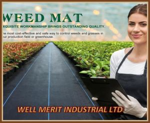 PP Woven Weed Control Mat UV Treated pictures & photos