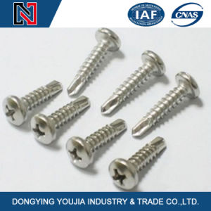 Phil Recessed Countersunk Head Self-Drilling Tapping Screws DIN7504p pictures & photos
