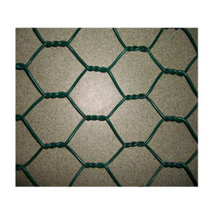 Hot Dipped Galvanized Hexagonal Chicken Wire Netting pictures & photos