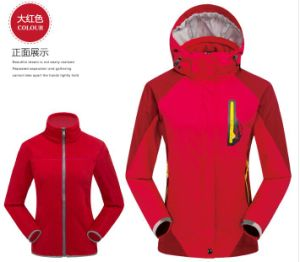 Women′s Outdoor Jacket