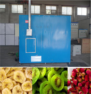 Black Pepper and Red Chilli Drying Machine pictures & photos