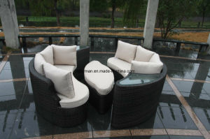 Patio Furniture (FSS-1161)