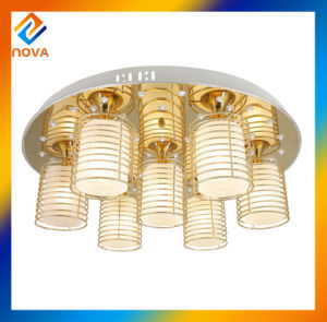 Crystal Chandelier Ceiling Light Lighting pictures & photos