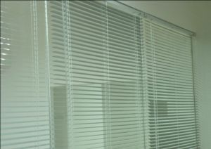 Clearly Window Shutter