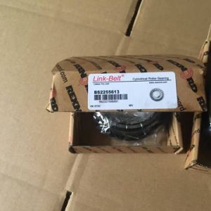 American Brand Link-Belf Distributor BS2255613 Cylindrical Roller Bearing pictures & photos