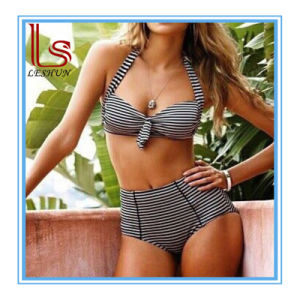 2017 Sexy Striped Bikini Swimwears pictures & photos