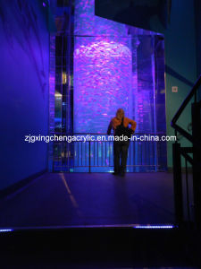 Marine Acrylic Fish Tank pictures & photos