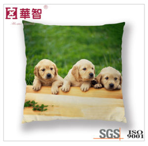 Hometextile Bedding Sets Decoration Pillow pictures & photos