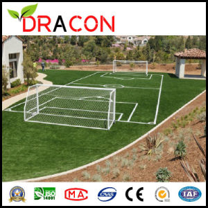 High Function Football Artificial Grass (G-5004) pictures & photos