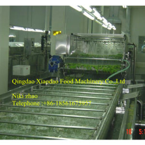 Vegetable Blanching Machine, Fruit and Vegetable Blanching Equipment pictures & photos