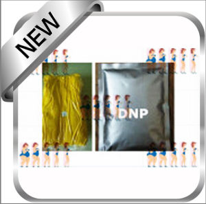 2, 4-Dinitrophenolate / 2, 4-Dinitrophenol DNP 51-28-5 for Weight Loss pictures & photos